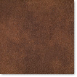Eastwood Faux Leather Samples